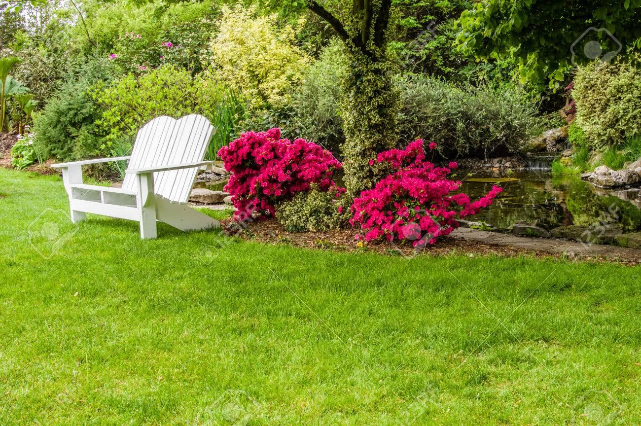 Un banc à proximité d'arbustes de jardin